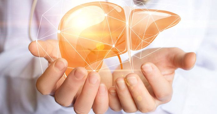 Gallsyror och dess effekt på lever, tarm, immunsystem och sköldkörtel