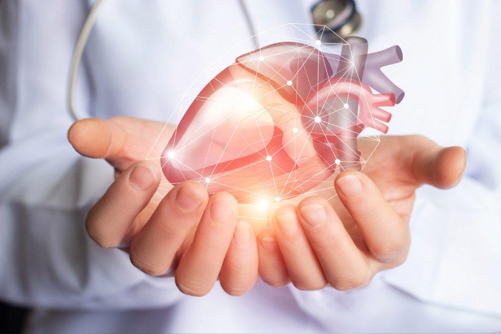 hjärta- och kärl